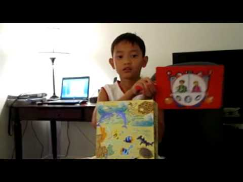 The book box project dolphins at daybreak youtube for How to make a book for a project
