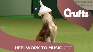 Freestyle International Heelwork to Music - Part 1   Crufts 2019