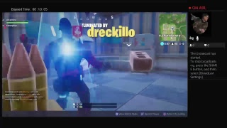 The fortnint video