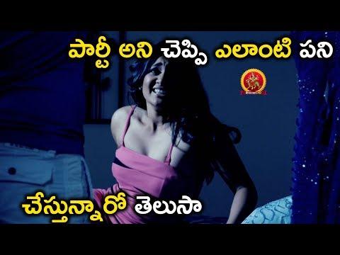 పార్టీ అని చెప్పి ఎలాంటి పని చేస్తున్నారో తెలుసా - 2018 Telugu Movie Scenes - Mr Fraud Movie