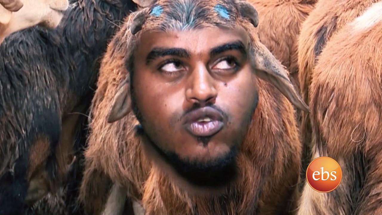 Comedy: Funny Video on Holiday Sheep Business in Addis - የዘንድሮ በግ: አስቂኝ የአውድ ዓመት ጨዋታ ስለበግ