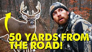 BIG BUCKS CLOSE TO THE ROAD! - Hunt Breakdown | Public Land Bowhunting