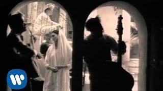 Download Lagu Café Tacvba - María (Video Oficial) Gratis STAFABAND