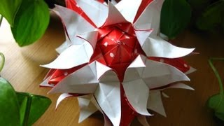 Origami  Rio Rita  Kusudama