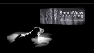 SoundView Recording & Films reel