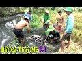 Kéo Lưới Bắt Cá Kéo Muốn Không Nỗi và Bữa Cơm Dân Dã Đậm Chất Miền Tây/Catch The Fish NGÃ NĂM TV thumbnail