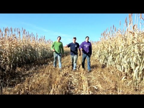 Farmer Style (Gangnam Style Parody)