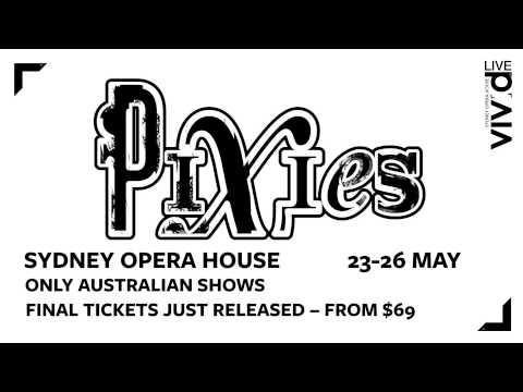 Vivid LIVE 2014: Pixies (teaser)