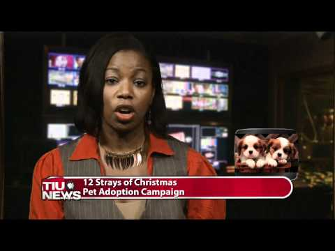 Wtiu Newsbreak December 10 2010