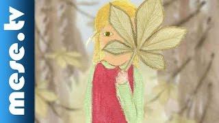 Gesztenyefa levél (animáció, mese)