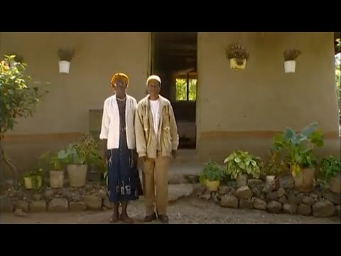 Shamba Shape Up (Swahili) - Maize, Push-Pull, Chickens Thumbnail