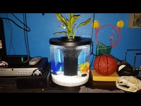 Review Of The: Top Fin Aquaponics 3.5 Gallon Fish tank