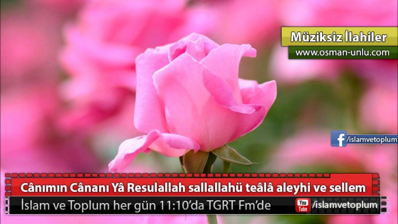 Resulün aleyhisselâm Hasreti - Müziksiz İlahi