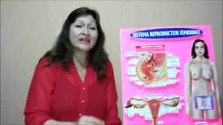 Descenso vaginal   Tratamiento natural 4ta parte de 4