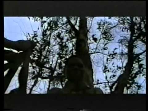 Xxx Vlad Xxx video