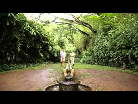 Tour National Tropical Botanical Garden's Southshore Gardens