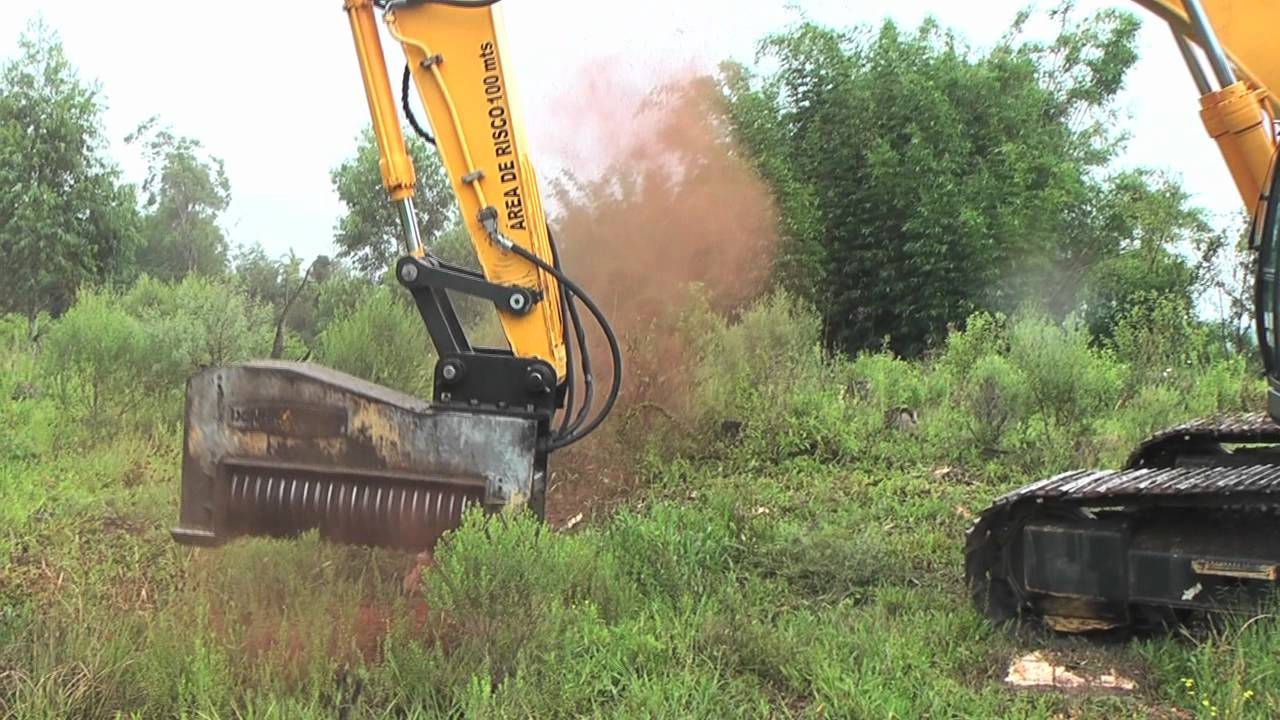 [Professional Tree Mulcher Shreds Trees Like Tissue Paper] Video