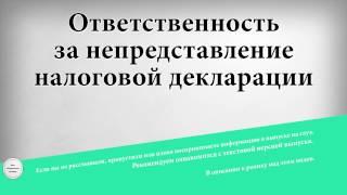 штраф за неподанную декларацию по ип в налоговую наездник Камеры пыток