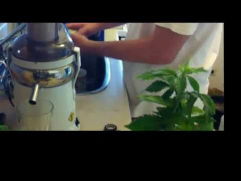 My Daily Juiced Cannabis Routine - Medical Marijuana Treatment For Arthritis