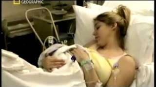 Download Lagu National Geographic - Bebek Doğum Anı Gratis STAFABAND