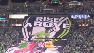 ECS TIFO Display vs Impact