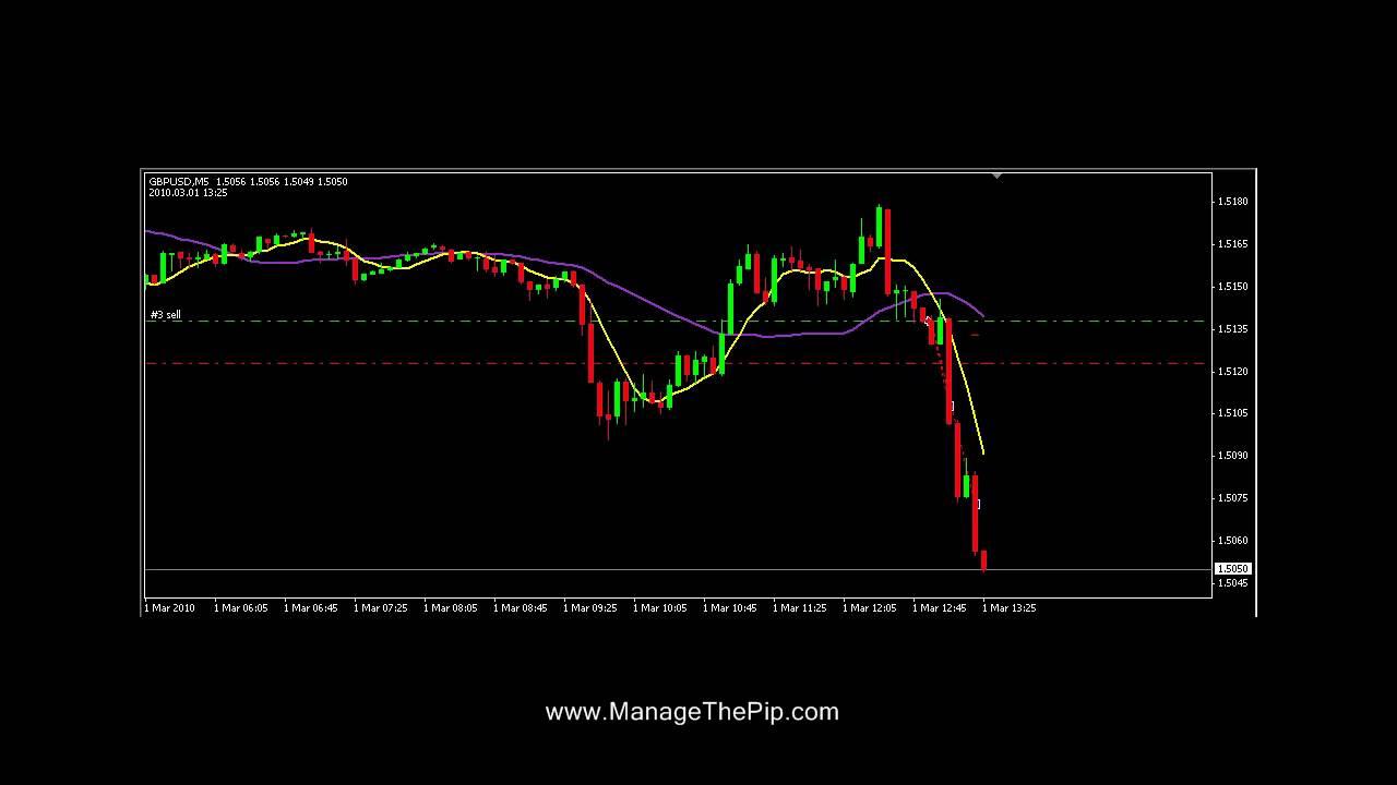 Forex money management ea