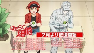 Cells at Work! video 1