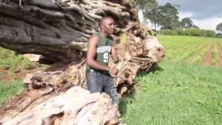 Sam WaKiambo - Kairitu Ga Kinangop