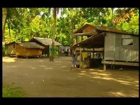 The Bill - Solomon Islands