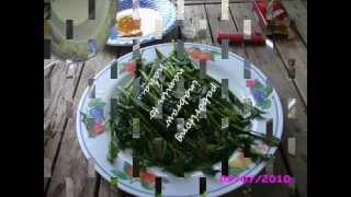 Watch Kamikazee Apir Day video