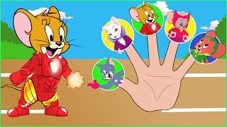 Tom and Jerry Avenger Finger Family Song - Tom and Jerry Cartoon Nursery Rhymes Songs for Kids