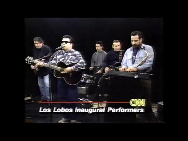 Los Lobos - Wicked Rain - LIVE!