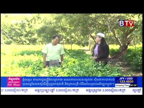Khmer Agriculture News