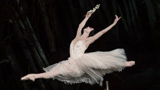 Natalia Osipova on Giselle and dancing with The Royal Ballet