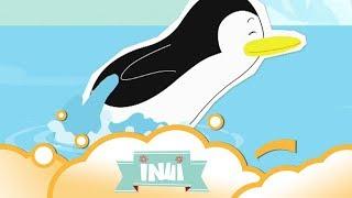 Inui: In The Swim S1 E5 | WikoKiko Kids TV