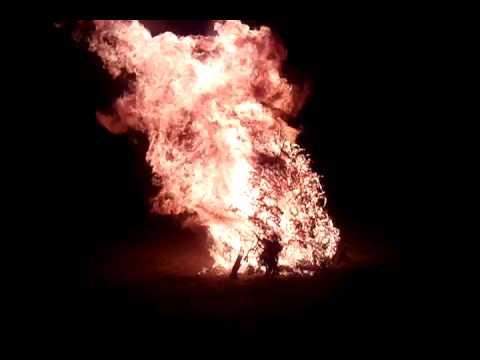 my flaming family tree