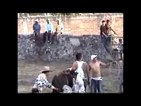 PURUAGUITA JARIPEO 2010