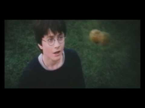 Учат в школе (Гарри Поттер)