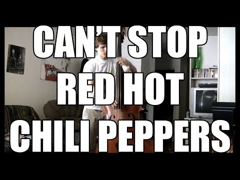 Thumbnail of video Red Hot Chili Peppers - Can't Stop Upright Bass Cover