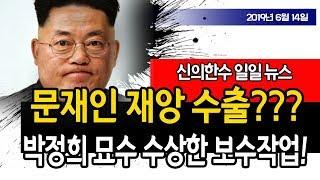 문재인 재앙 수출??? 박정희 대통령 묘소의 수상한 보수작업!!! (일일 뉴스) / 신의한수 19.06.14