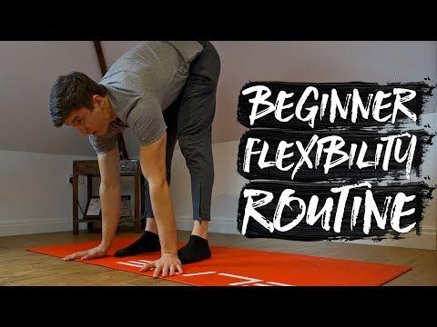15 Minute Beginner Flexibility Routine! (FOLLOW ALONG) thumbnail