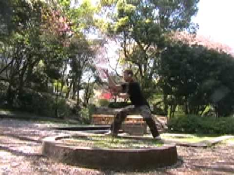 Bagua Zhang Dragon Well Progression