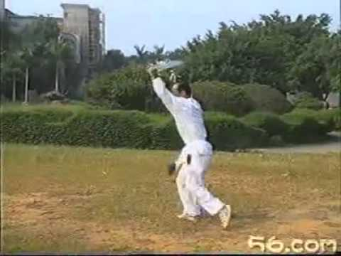 Southern Chinese Kung Fu Weapon:Choy Lee Fut Wu Dip Do Image 1