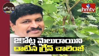 TRS MP Santosh Kumar Green Challenge to YCP MP Vijaysaireddy | Jordar News | hmtv Telugu News