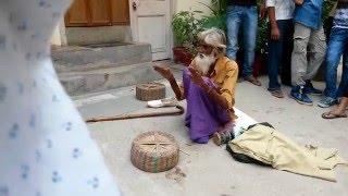 Amazing real magic INDIA's GOT TALENT