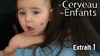 Le Cerveau des Enfants // Extait 01 // VOST