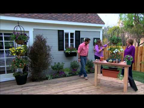 Home & Family - Shirley Bovshow