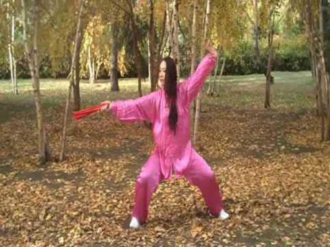 Tai Chi Kung Fu Fan