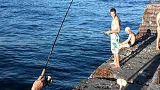 рыбалка черное море жилье