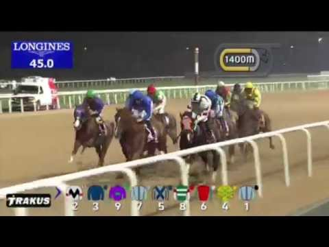 Prince Bishop storms home at Meydan to become his sire's second Dubai World Cup winner